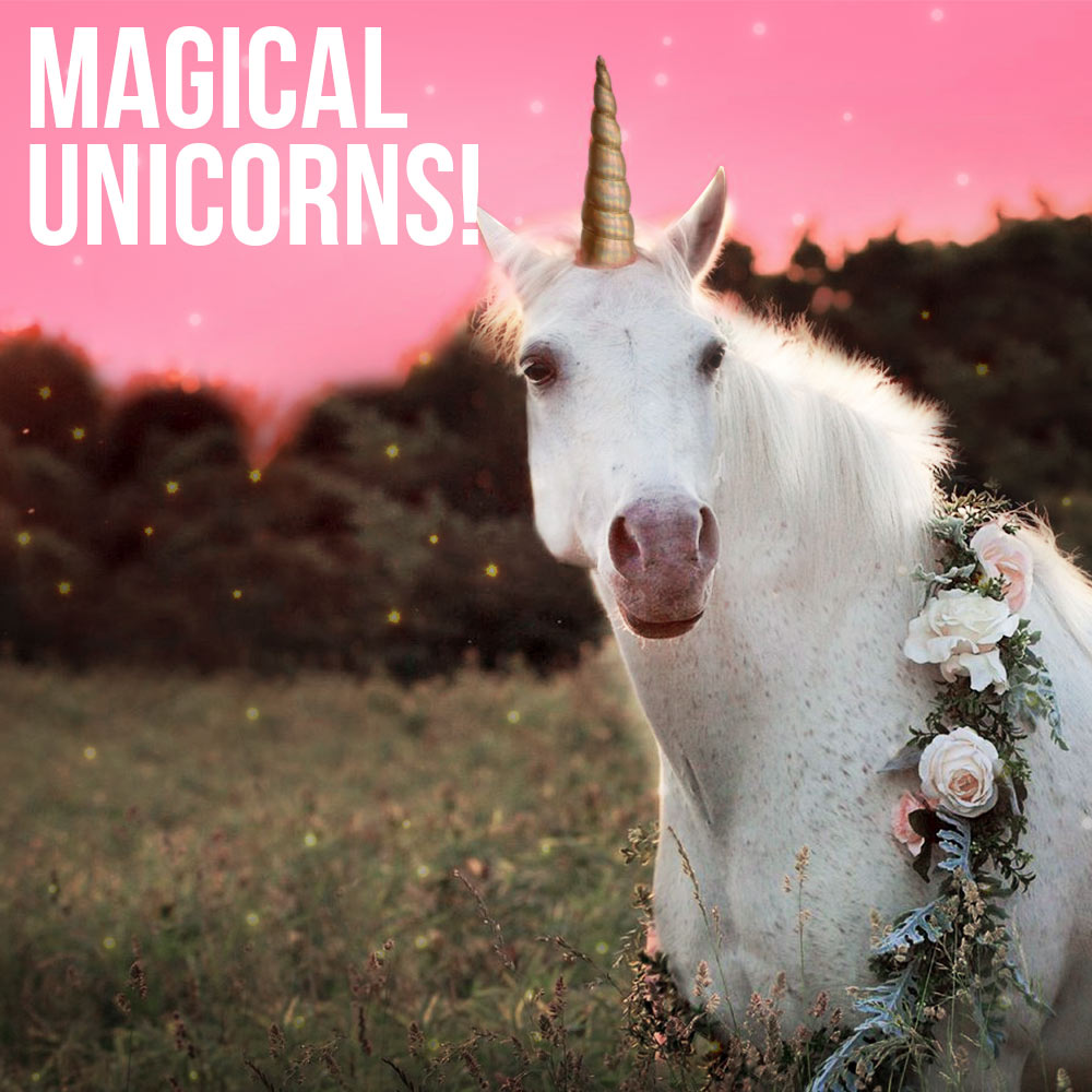 Magical Unicorns